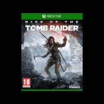 Microsoft Xbox One Rise of the Tomb Raider
