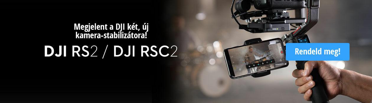 RS 2 / RSC 2