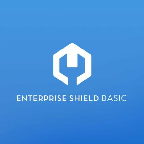 DJI Enterprise Shield Basic (Matrice 200 V2)