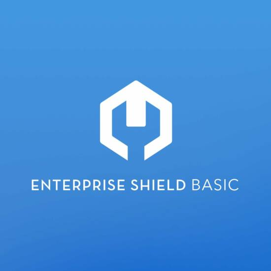 DJI Enterprise Shield Basic (Matrice 210 RTK V2)